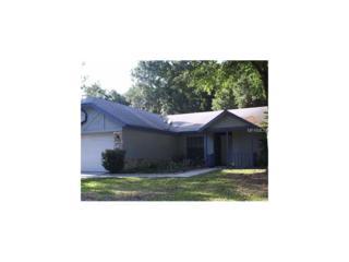 1922 Dove Field Place, Brandon, FL 33510 (MLS #O5500215) :: The Duncan Duo & Associates