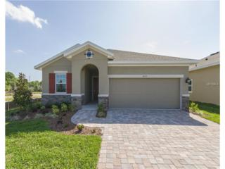6032 Plover Meadow Street, Lithia, FL 33547 (MLS #T2807662) :: The Duncan Duo & Associates