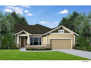 13907 Goldfinch Glade Lane, Lithia, FL 33547 (MLS #T2807672) :: The Duncan Duo & Associates