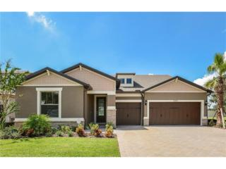 10415 Scarlet Chase Drive, Riverview, FL 33569 (MLS #T2814217) :: The Duncan Duo & Associates