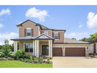 11207 Lark Landing Court, Riverview, FL 33569 (MLS #T2814503) :: The Duncan Duo & Associates
