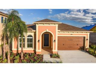 3998 Empoli Court, Wesley Chapel, FL 33543 (MLS #T2830788) :: The Duncan Duo & Associates