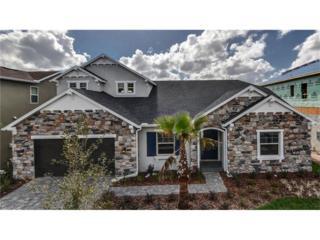 18008 Pine Hammock Boulevard, Lutz, FL 33548 (MLS #T2838159) :: The Duncan Duo & Associates