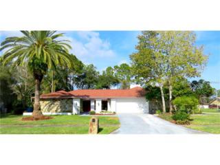 4301 Ashby Lane, Tampa, FL 33624 (MLS #T2845798) :: The Duncan Duo & Associates