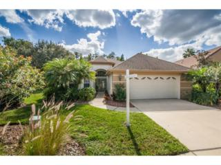 9613 Greenpointe Drive, Tampa, FL 33626 (MLS #T2851369) :: The Duncan Duo & Associates