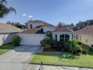 27332 Edenfield Drive, Wesley Chapel, FL 33544 (MLS #T2855248) :: The Duncan Duo & Associates