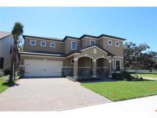 11201 Lark Landing Court, Riverview, FL 33569 (MLS #T2856693) :: The Duncan Duo & Associates