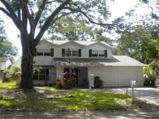 1612 Burning Tree Lane, Brandon, FL 33510 (MLS #T2863655) :: The Duncan Duo & Associates