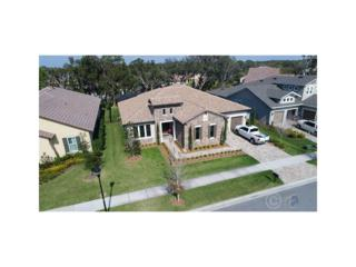 5306 Granite Ridge Drive, Lithia, FL 33547 (MLS #T2863696) :: The Duncan Duo & Associates