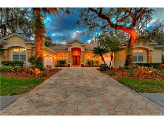 16312 Dunlindale Drive, Lithia, FL 33547 (MLS #T2865854) :: The Duncan Duo & Associates