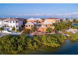 1018 Symphony Isles Boulevard, Apollo Beach, FL 33572 (MLS #T2866336) :: The Duncan Duo & Associates