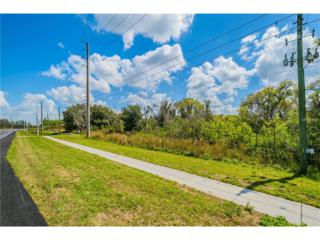20600 State Road 54, Lutz, FL 33558 (MLS #T2866543) :: The Duncan Duo & Associates