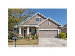 15861 Starling Water Drive, Lithia, FL 33547 (MLS #T2867867) :: The Duncan Duo & Associates