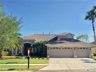 10540 Greencrest Drive, Tampa, FL 33626 (MLS #T2870117) :: The Duncan Duo & Associates