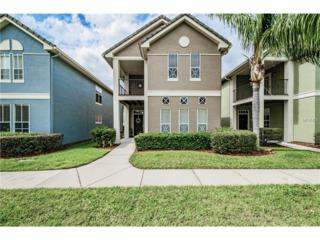4005 Alexander Palm Court, Tampa, FL 33624 (MLS #T2870641) :: The Duncan Duo & Associates