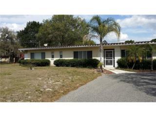 2903 Bell Shoals Road, Brandon, FL 33511 (MLS #T2872302) :: The Duncan Duo & Associates