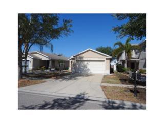 11339 Cocoa Beach Drive, Riverview, FL 33569 (MLS #T2873222) :: The Duncan Duo & Associates