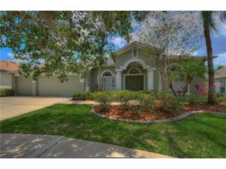 6324 Bridgevista Drive, Lithia, FL 33547 (MLS #T2875509) :: The Duncan Duo & Associates