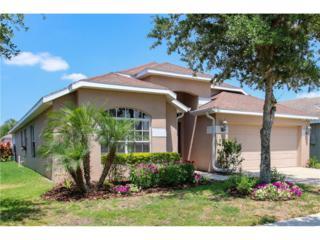 16340 Bridgeglade Lane, Lithia, FL 33547 (MLS #T2879579) :: The Duncan Duo & Associates