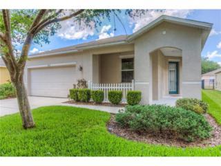 15431 Osprey Glen Drive, Lithia, FL 33547 (MLS #T2880224) :: The Duncan Duo & Associates