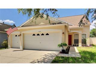 11122 Newbridge Drive, Riverview, FL 33579 (MLS #T2882581) :: The Duncan Duo & Associates
