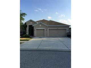 16510 Bridgewalk Drive, Lithia, FL 33547 (MLS #T2882833) :: The Duncan Duo & Associates