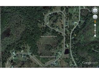 8940 Woodleaf Boulevard, Wesley Chapel, FL 33544 (MLS #T2748343) :: The Duncan Duo & Associates