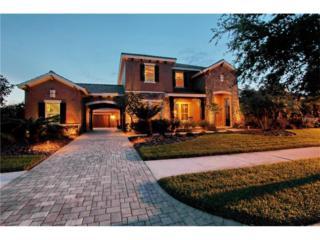 17420 Varona Place, Lutz, FL 33548 (MLS #T2814975) :: The Duncan Duo & Associates