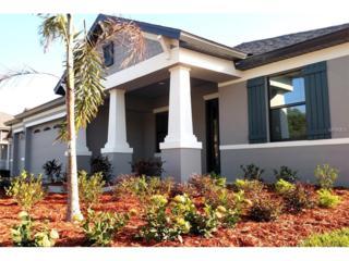 205 Ware Archway Court, Brandon, FL 33510 (MLS #T2854640) :: The Duncan Duo & Associates