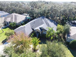 5812 Terncrest Drive, Lithia, FL 33547 (MLS #T2861089) :: The Duncan Duo & Associates