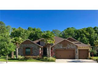 3113 Cordoba Ranch Boulevard, Lutz, FL 33559 (MLS #T2862580) :: The Duncan Duo & Associates