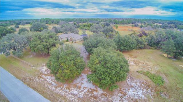 Lot 87 Ocilla Loop, Clermont, FL 34714 (MLS #O5480342) :: Griffin Group