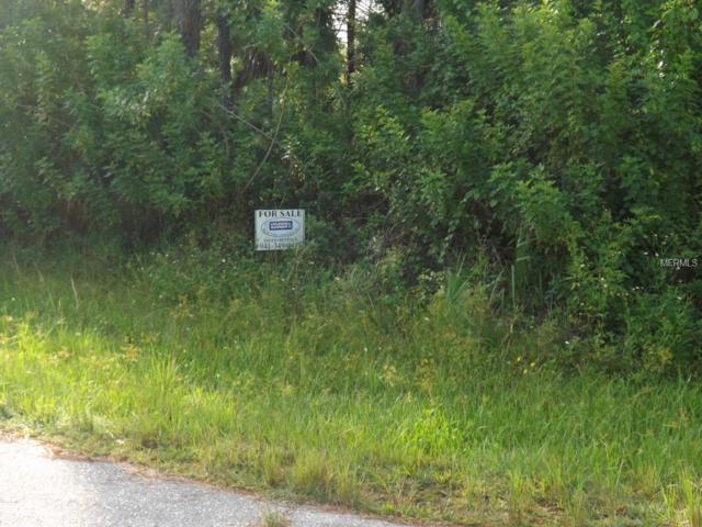 26000 Flower Road, Punta Gorda, FL 33955 (MLS #A4133414) :: Griffin Group