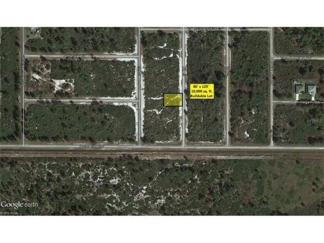 561 Clipper Avenue NW, Lake Placid, FL 33852 (MLS #A4175087) :: Griffin Group