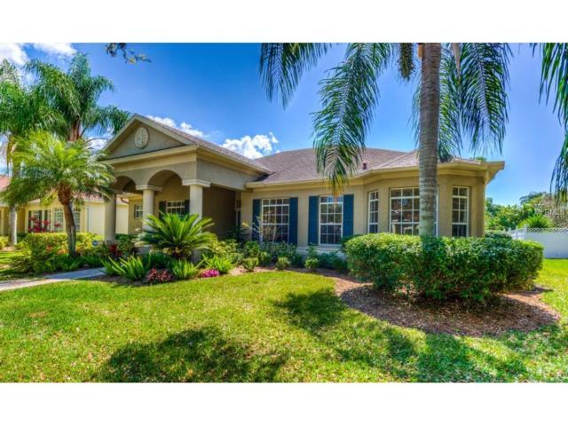 746 Anna Hope Lane, Osprey, FL 34229 (MLS #A4182693) :: Medway Realty