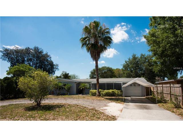 2340 Rose Street, Sarasota, FL 34239 (MLS #A4185780) :: The Duncan Duo & Associates