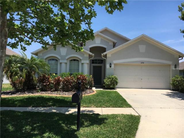 6734 Runner Oak Drive, Wesley Chapel, FL 33545 (MLS #A4186309) :: The Duncan Duo & Associates