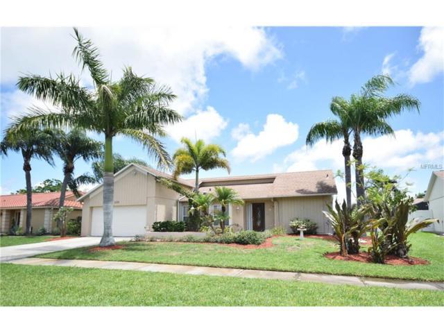 3739 Kingston Boulevard, Sarasota, FL 34238 (MLS #A4188772) :: Medway Realty