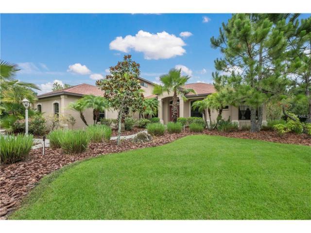 2418 156TH Place E, Parrish, FL 34219 (MLS #A4189579) :: Team Pepka
