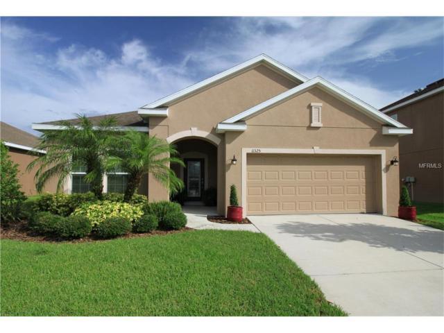 11325 80TH Street E, Parrish, FL 34219 (MLS #A4189778) :: Team Pepka