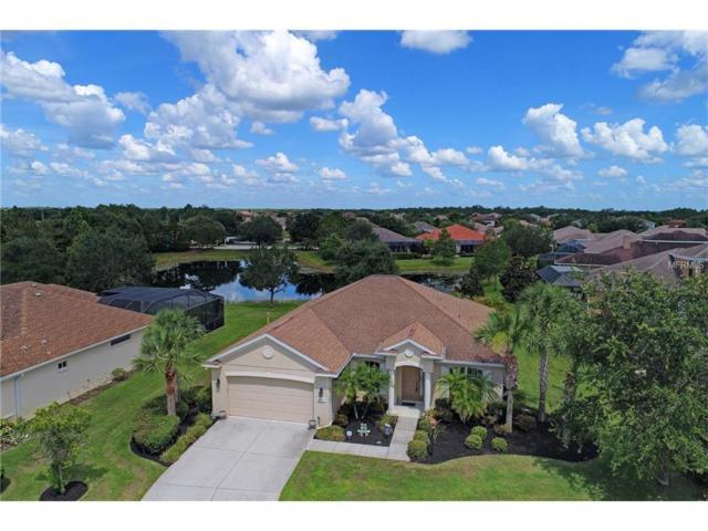 6615 Rosy Barb Court, Lakewood Ranch, FL 34202 (MLS #A4189811) :: Team Pepka