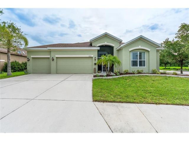 4302 Douglas Hill Place, Parrish, FL 34219 (MLS #A4189863) :: Team Pepka