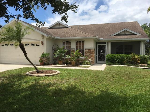 12049 Warwick Circle, Parrish, FL 34219 (MLS #A4189882) :: Team Pepka