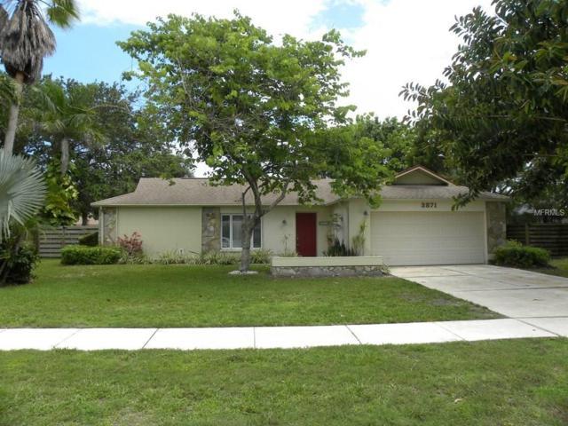 3871 Kingston Boulevard, Sarasota, FL 34238 (MLS #A4189985) :: Team Pepka