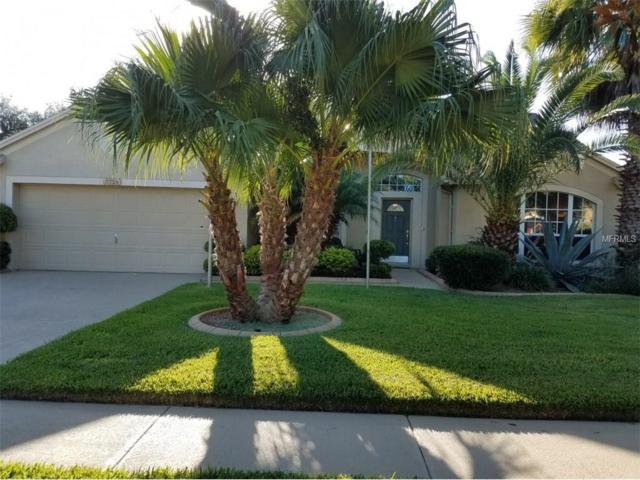 3724 Eaglewood Street, Valrico, FL 33596 (MLS #A4190000) :: Arruda Family Real Estate Team