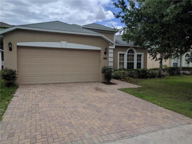 9965 Shadow Creek Dr, Orlando, FL 32832 (MLS #A4190030) :: RE/MAX Realtec Group
