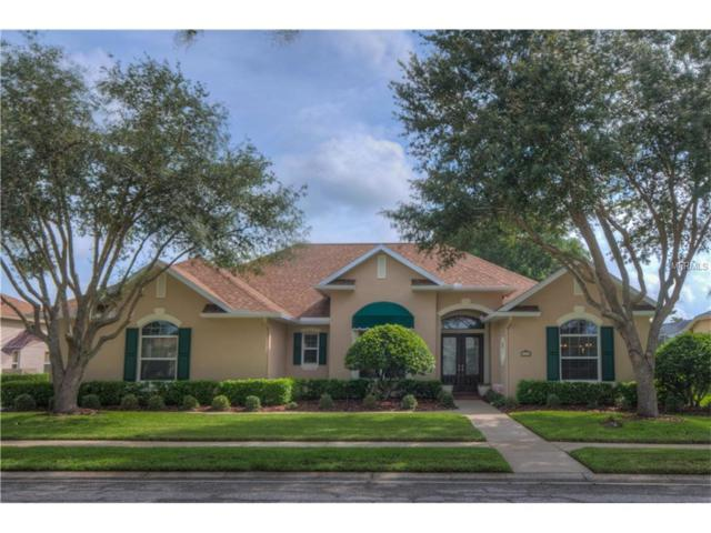 9913 Laurel Valley Avenue Circle Circle, Bradenton, FL 34202 (MLS #A4190034) :: Griffin Group