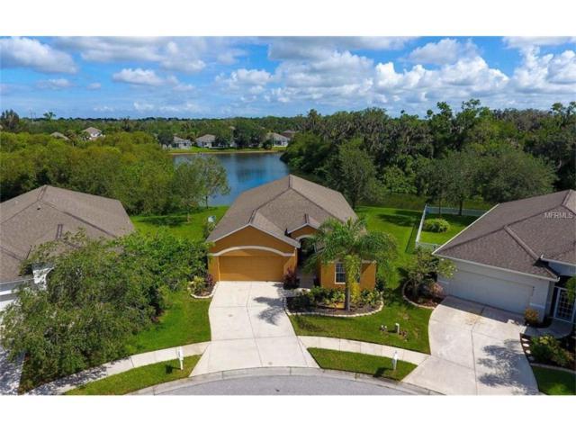 4523 Ferrys Mill Place, Ellenton, FL 34222 (MLS #A4190226) :: Medway Realty