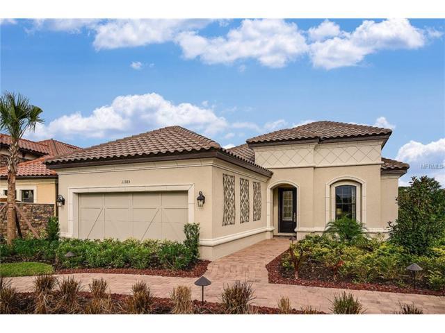 5584 Cantucci Street, Nokomis, FL 34275 (MLS #A4190324) :: Medway Realty