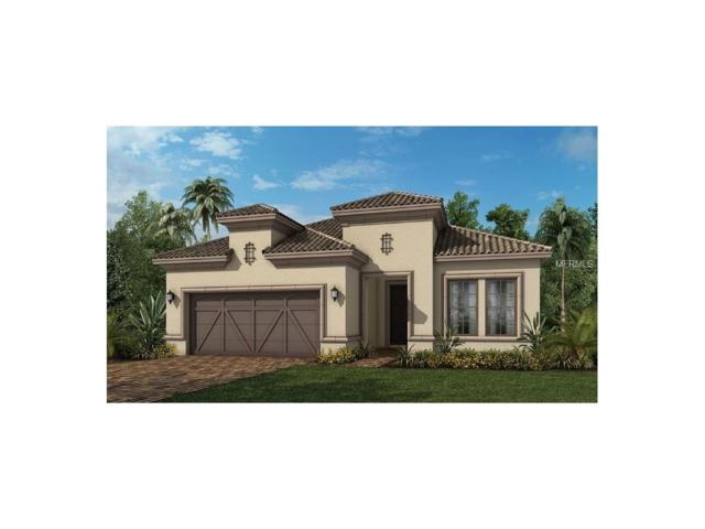 5584 Semolino Street, Nokomis, FL 34275 (MLS #A4190326) :: Medway Realty